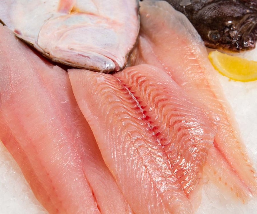 Image of Fresh Fin Fish | Flounder