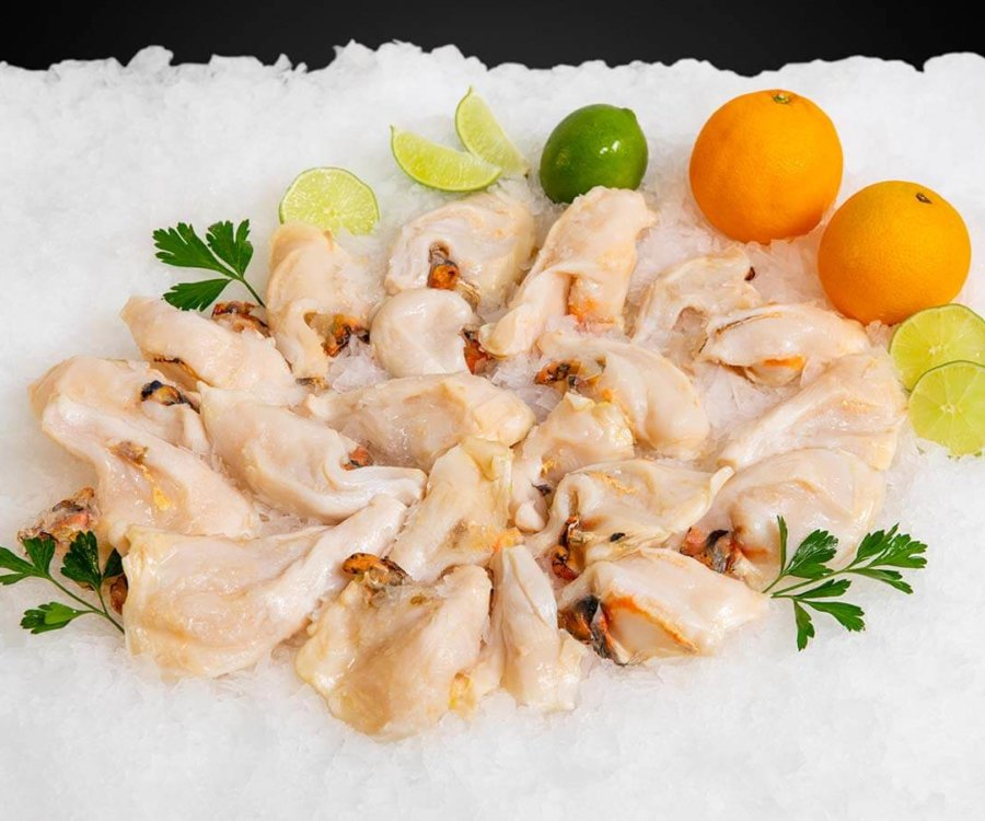 Wholesale Seafood Photo Gallery Image: Conch meat