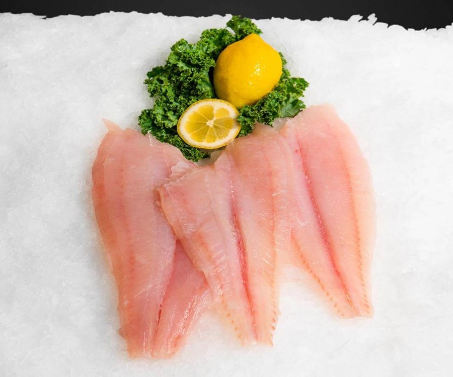 Wholesale Seafood Photo Gallery Image: Flounder
