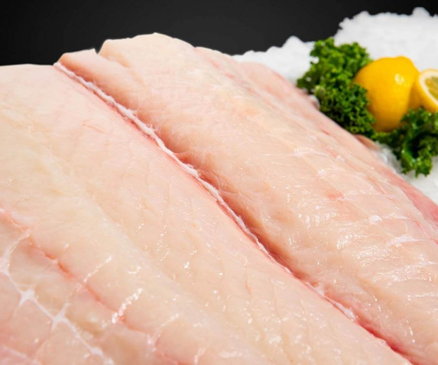Wholesale Seafood Photo Gallery Image: Halibut