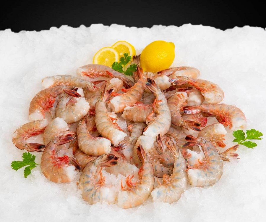 Wholesale Seafood Photo Gallery Image: Jumbo hopper shrimp