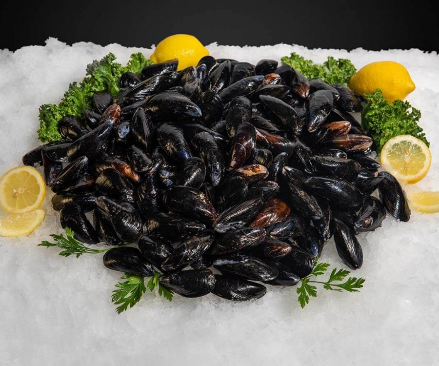 Wholesale Seafood Photo Gallery Image: mussels