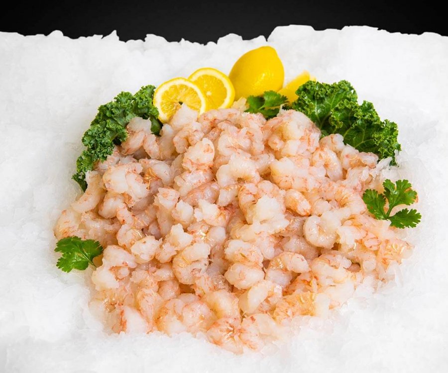 Wholesale Seafood Photo Gallery Image: Rock Shrimp