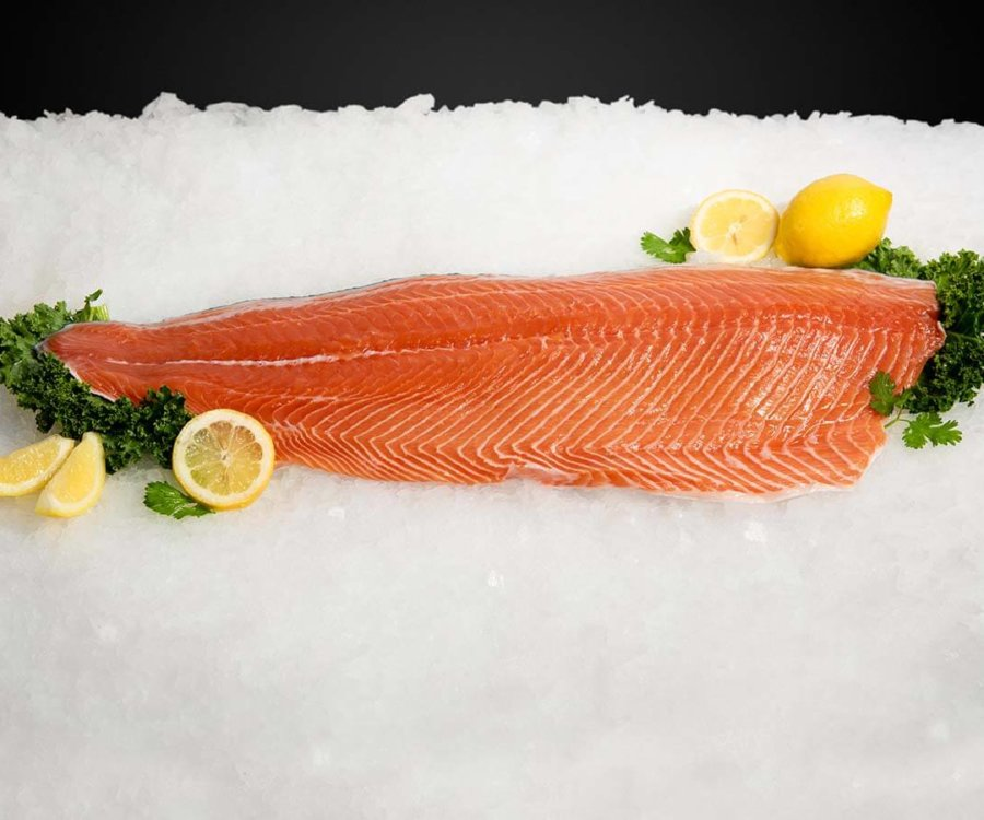 Wholesale Seafood Photo Gallery Image: Salmon
