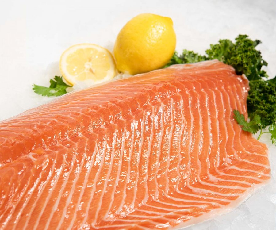 Image of Fresh Fin Fish | Salmon