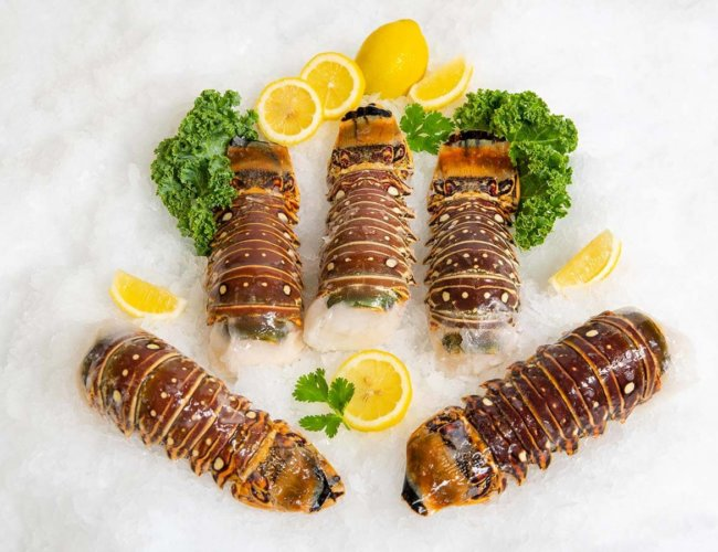 Wholesale Seafood Photo Gallery Image: Spiny Lobster Tails