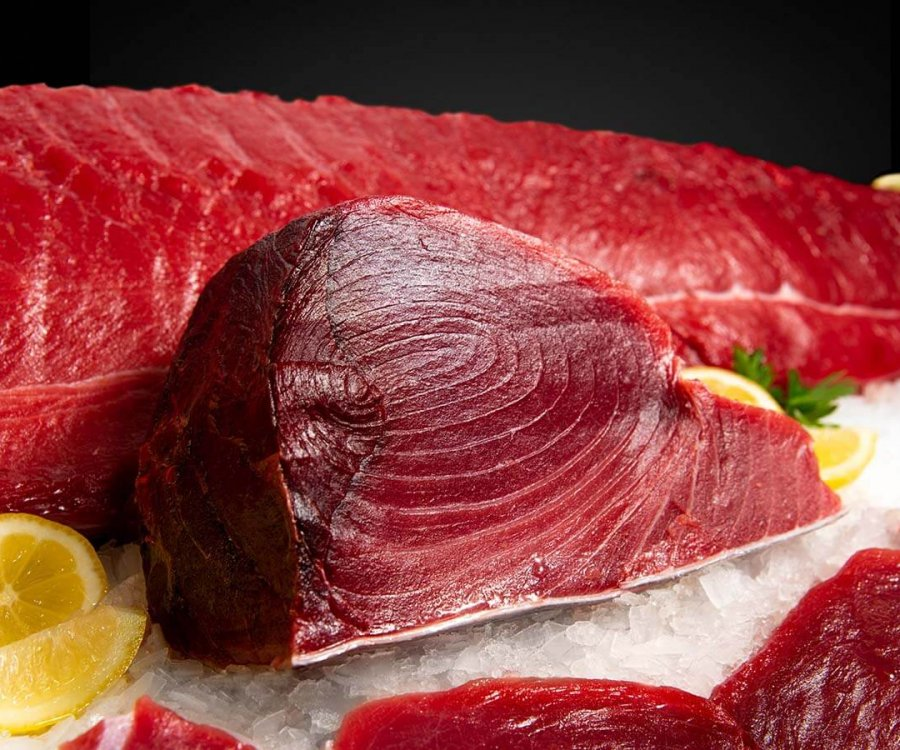 Wholesale Seafood Photo Gallery Image: Tuna