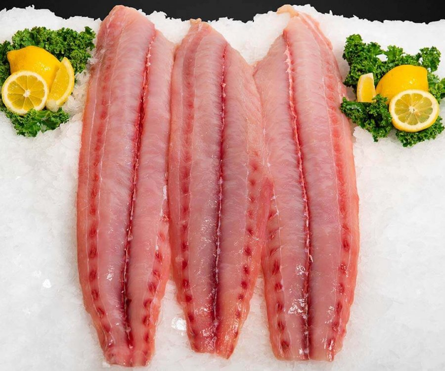 New-England-Wholesale-Fish-Lobster-Stuart-FL-Seafood-Wholesaler-mahi-1